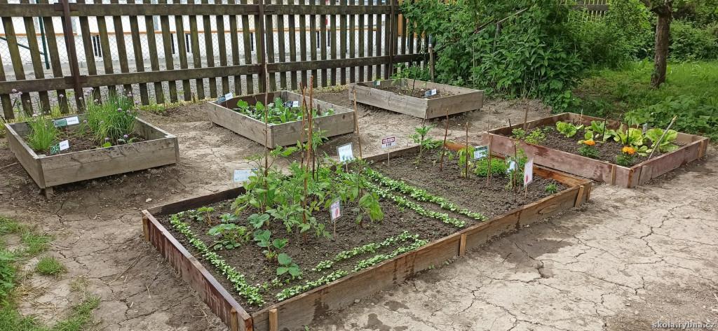 Zahrada-3
