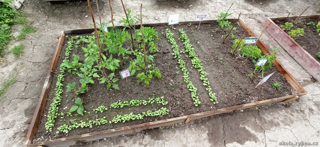 Zahrada-5