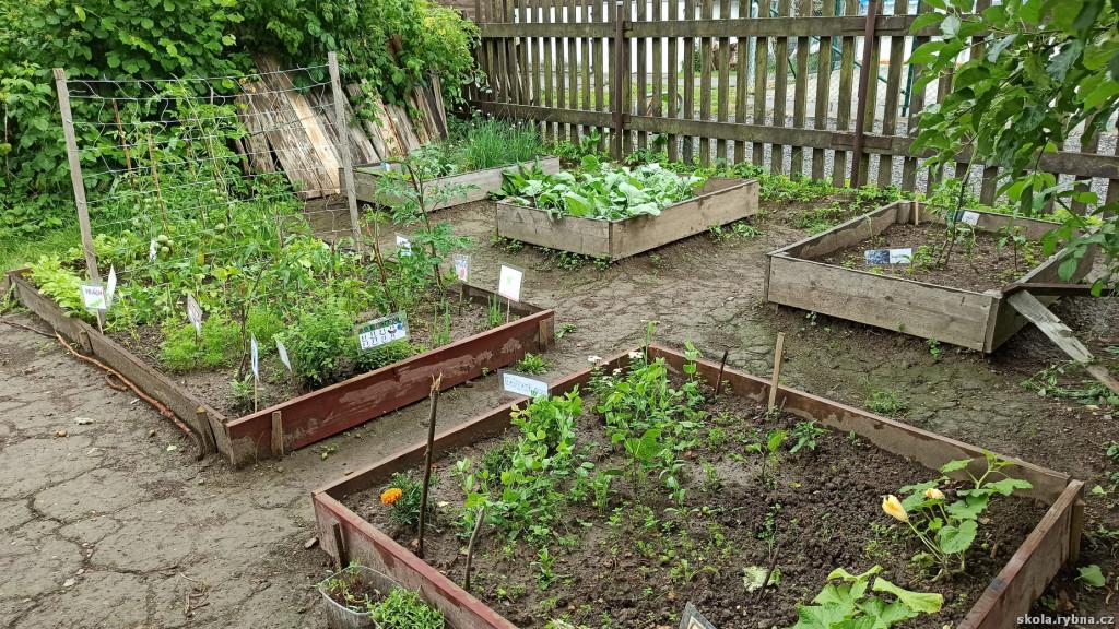 Zahrada-8