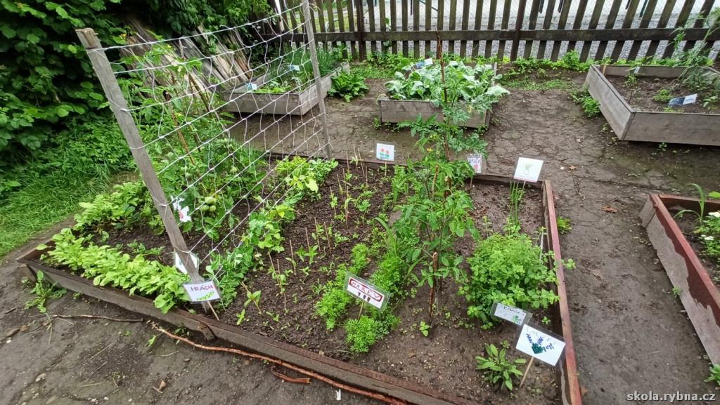 Zahrada-9