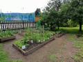 zahrada-11