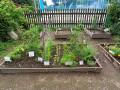 zahrada-13
