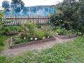zahrada-16
