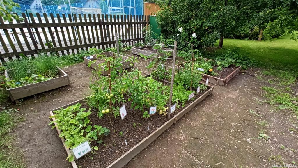 zahrada-14