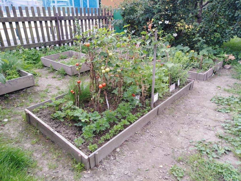 zahrada-15